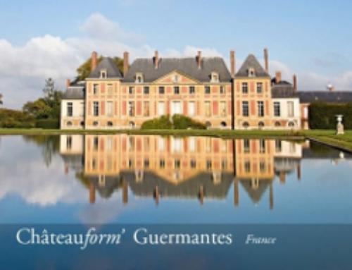 ChateauForm : l'expérience client B2B sans faute